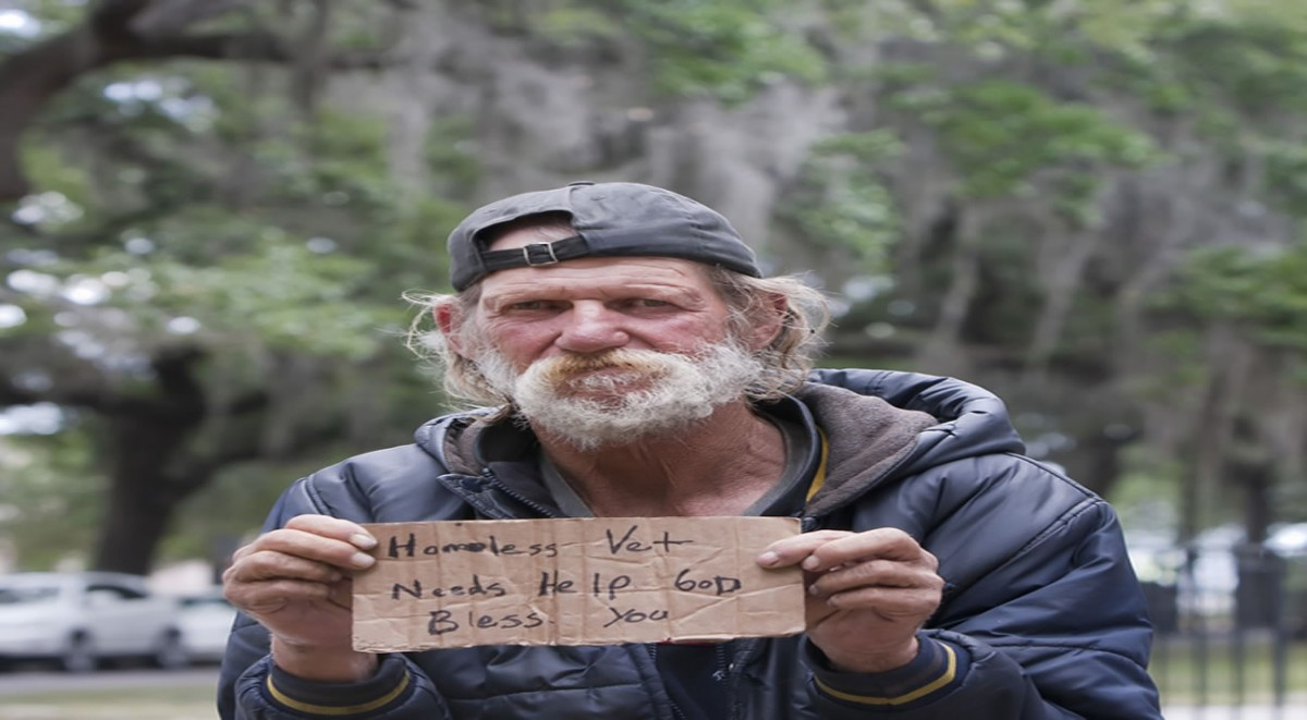 Homeless Vet - Medium Large